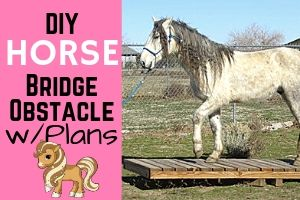 Plans For Building A Horse Bridge