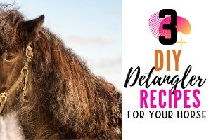 3 Easy DIY Horse Detangler Recipes