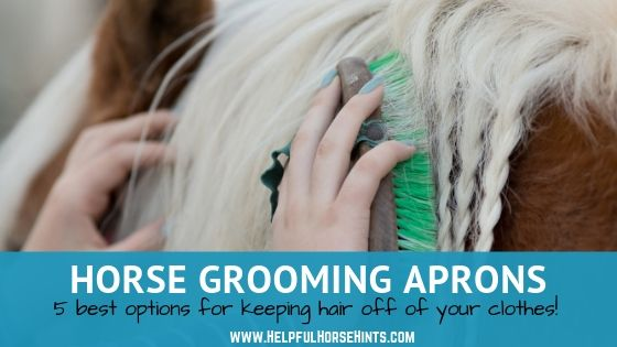 5 of the Best Horse Grooming Aprons