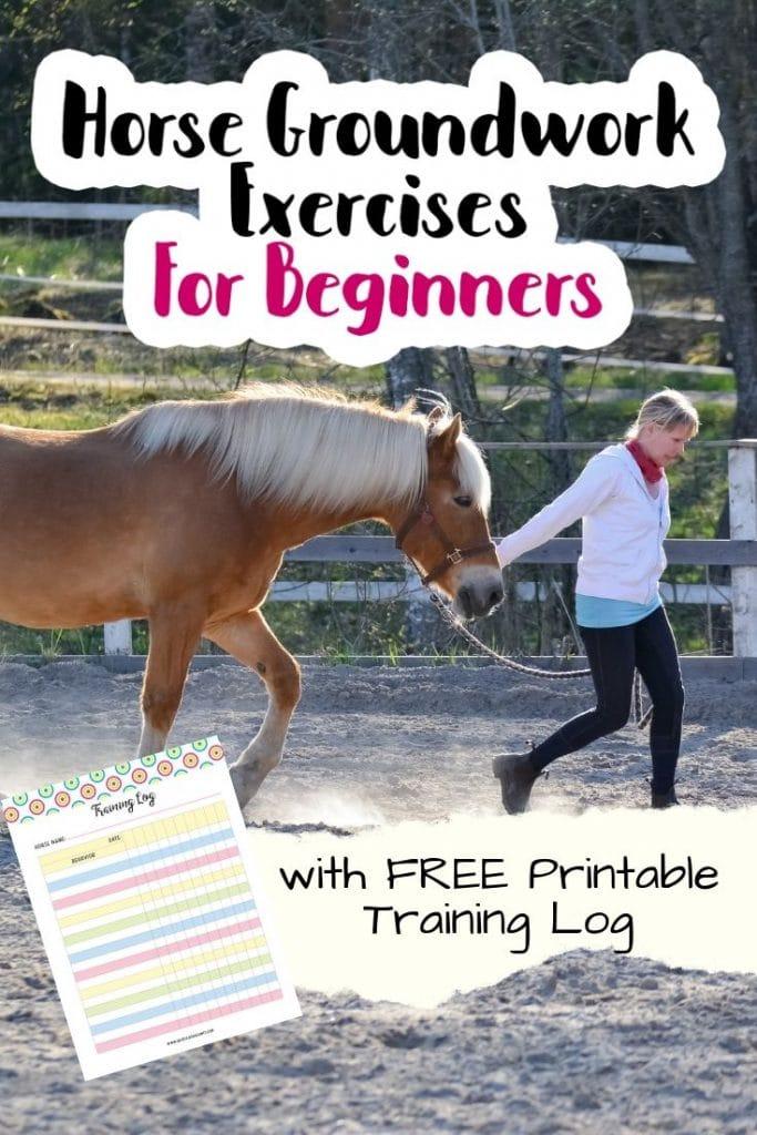 horse ground training checklist