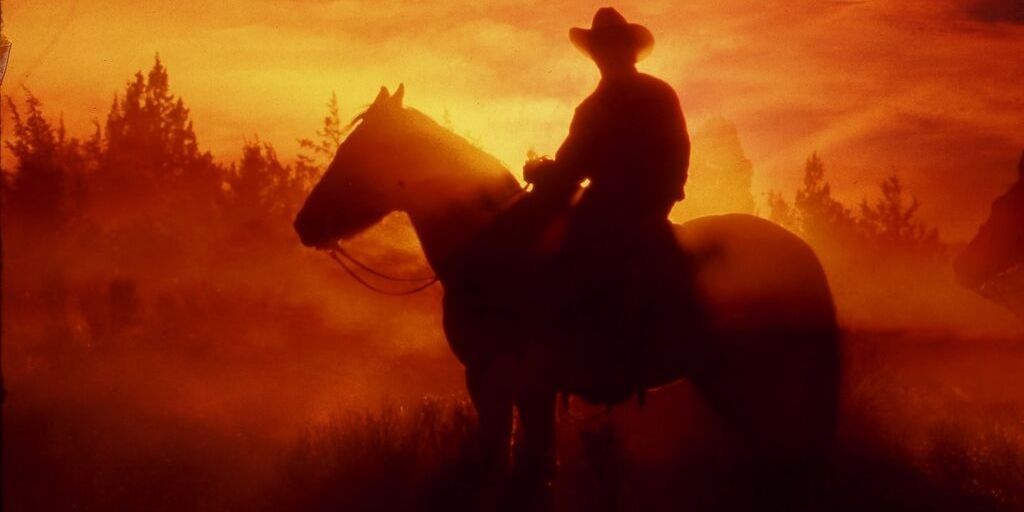 cowboy riding a western horse