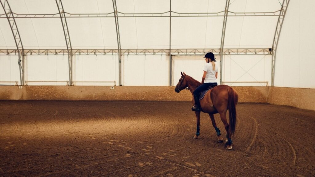 horse riding in watered arena