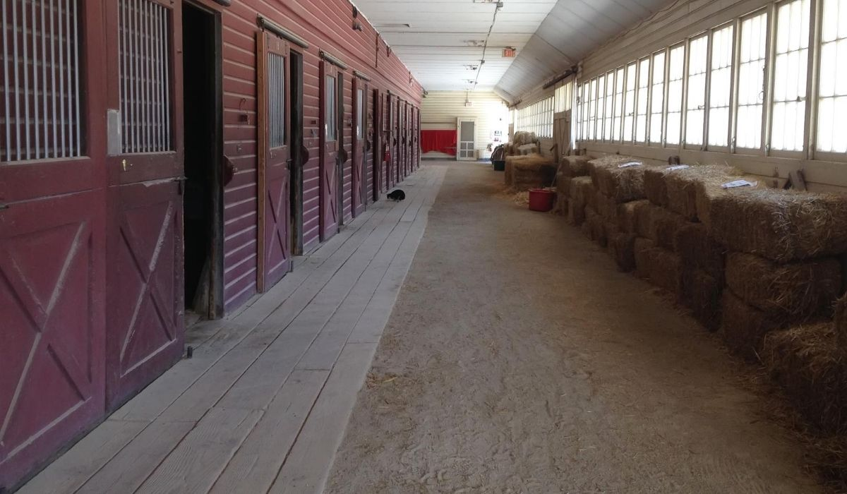 horse stall with wooden floor