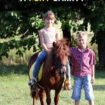 how much weight can a pony carry