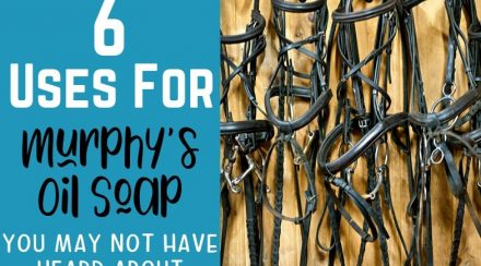 6 Uses for Murphy's Oil Soap You Hadn't Thought About