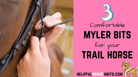 myler bits for your trail horse