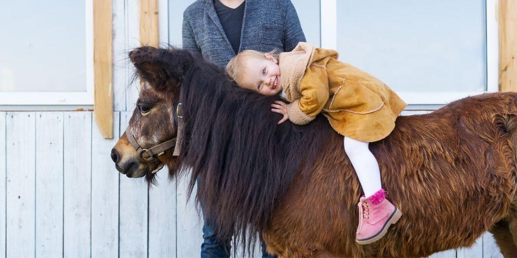 Senior Pony