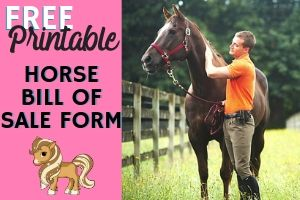FREE Printable Horse Bill of Sale Form