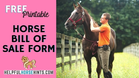 printable pdf horse bill of sale form