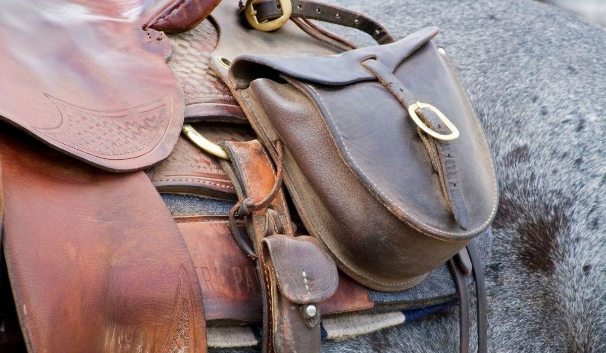 saddlebag