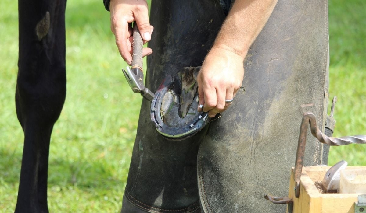 self-employed farriers