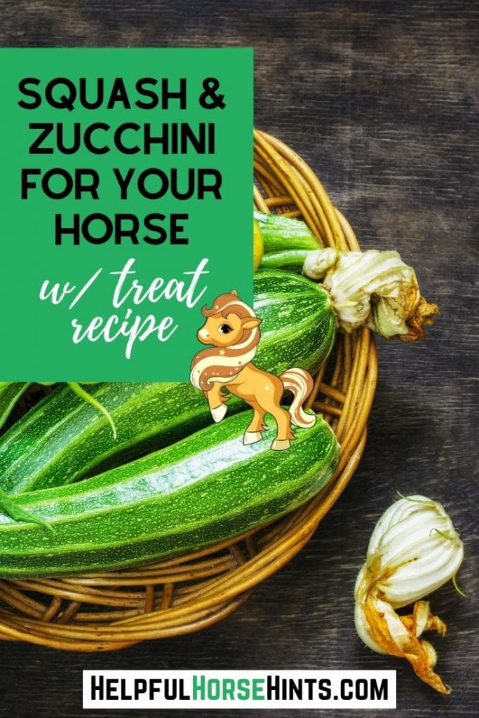 Pinterest pin - Squash and Zucchini for Your Horse with Treat Recipe