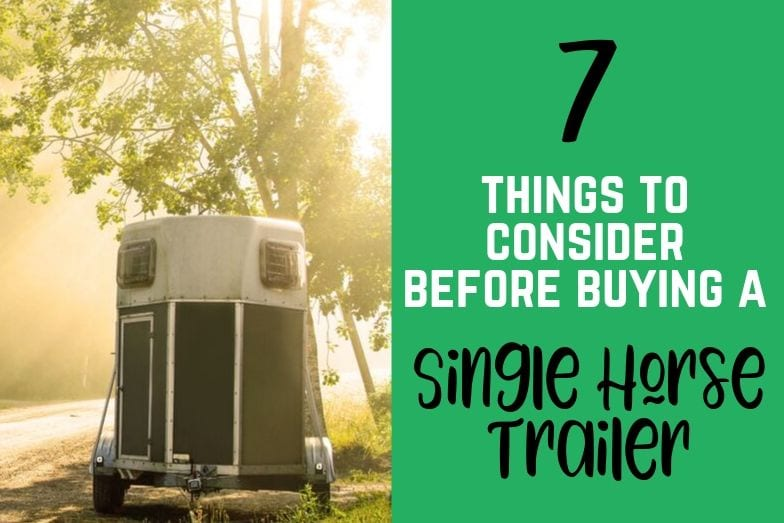 7 Things to Consider Before Buying a Single Horse Trailer
