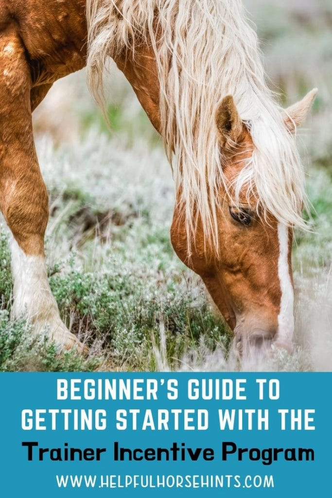 Beginner's guide to getting started with the Mustang Heritage Foundations TIP program for training BLM Mustangs and Burros.