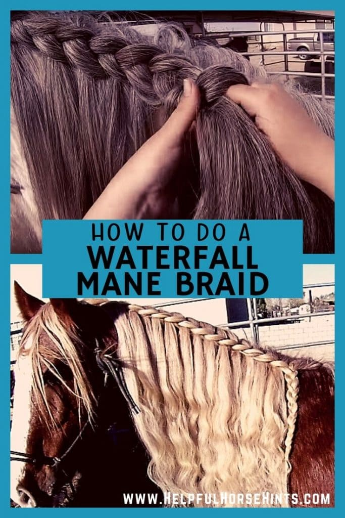 Learn how to do a waterfall horse mane braid on your horse. Includes video instructions.