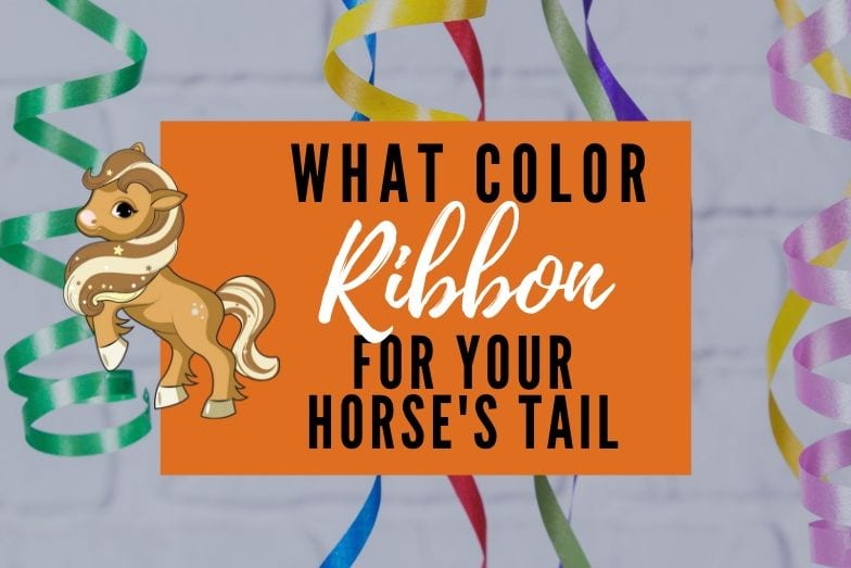 Guide to Horse Tail Ribbon Colors