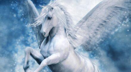 81 Pegasus Names