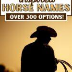 wild west horse names - pinterest image