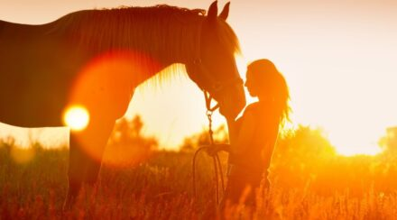 woman and horse in a sunset