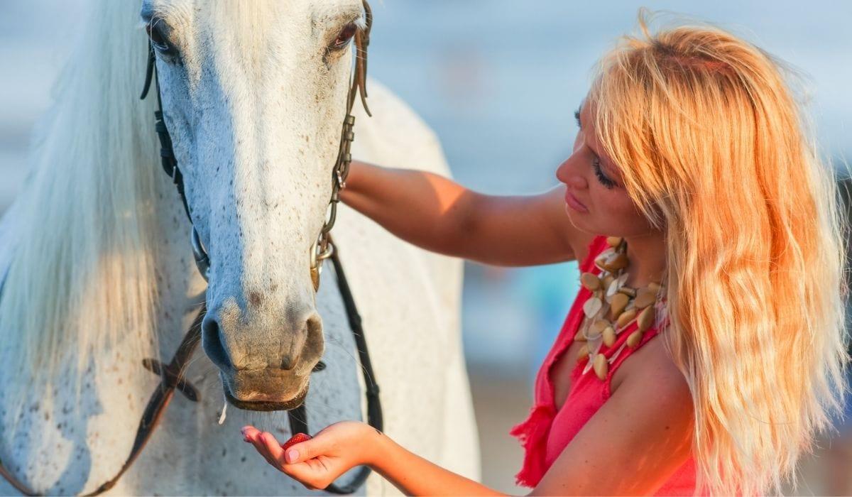 woman feeding horse strawberries