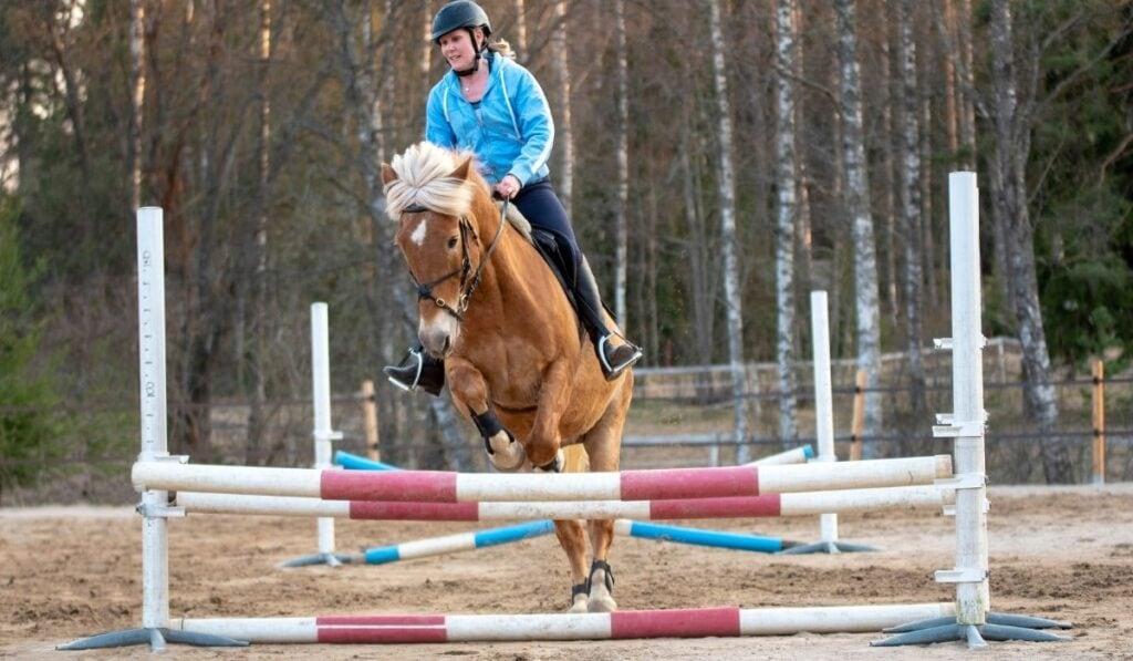 woman training for showjumping
